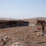 Bedouins under threat - February 2016